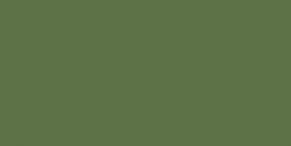 265 Молния потайная Т3 18см цв.т.зеленый(в упак.100шт)