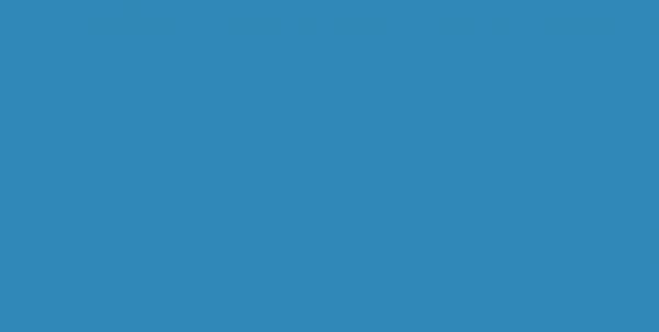 216 Молния потайная Т3 20см цв.бирюза(в упак.100шт)