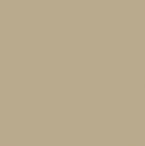 1016(12-0710) Ткань подкладочная 190Т 100%ПЭ цв.св.бежевый(в рул.100м)