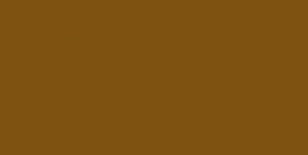 Кант кожаный матовый цв.т.коричневый(в рул.100м)